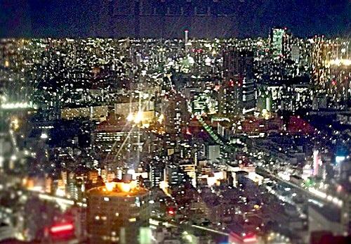 新宿夜景,夜景の綺麗のレストラン,ワインレストラン,ホテルオークラレストランデューク,新宿レストランDUKE,フレンチレストラン,フレンチコース料理,新宿野村ビル
